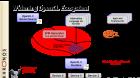 OCL_SPIR_tutorial-fs8